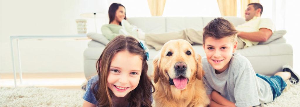 polizza assicurativa hdi per la famiglia