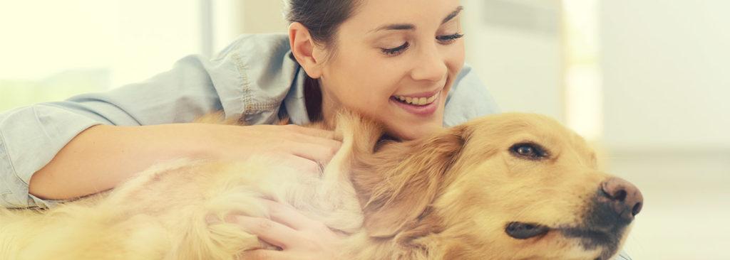 polizza hdi assicurazioni per i proprietari di animali